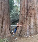 Alison hugging trees
